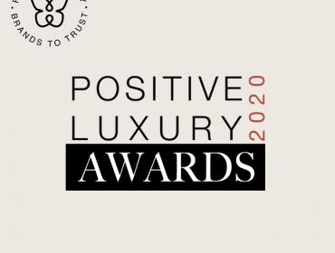 Delta Global Sponsor Positive Awards 2020